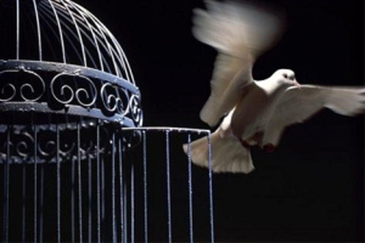 داستان کوتاه قفس صادق چوبک